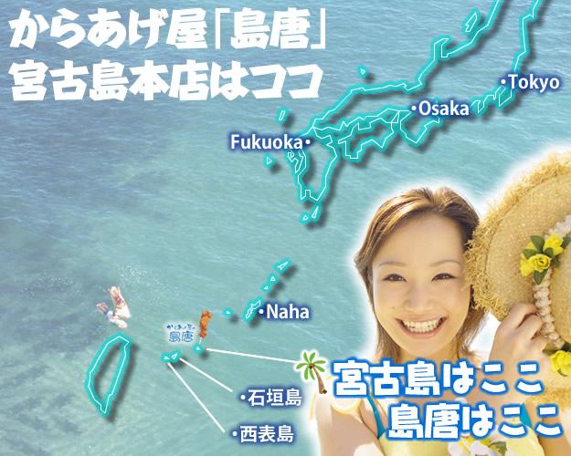 日本地図のイラストで宮古島の位置を解説。からあげ専門店「島唐」は、沖縄本島から南西に約290kmにある宮古島市にあります。