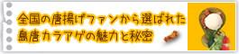 宮古島の青パパイヤや島唐辛子などの沖縄産・宮古島産の食材を使用した沖縄宮古島唐揚げ専門店「島唐」の当店こだわりについてご案内。