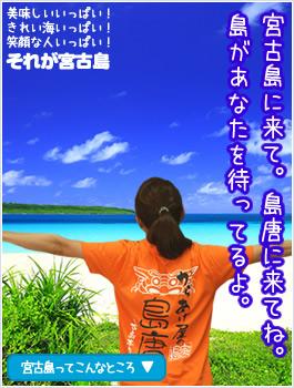 沖縄県宮古島の島唐周辺のビーチやダイビングスポット、シュノーケリングスポットなど、宮古島の人気スポットや観光地情報を島唐スタッフがお届けするページリンクバナー