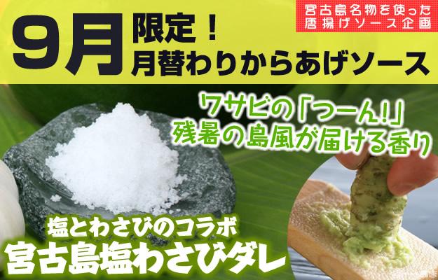2015年9月限定月替わりからあげソース。ワサビの「つーん」残暑の島風が届ける香り。塩とワサビのコラボ。宮古島塩わさびダレ。shop_event_tukigawari_sauce_september_wasabi_salt_source